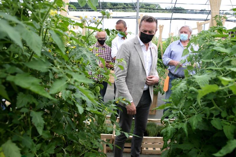 El Gobierno participará este verano en Torrelavega en el Festival del Tomate de Cantabria con un espacio dedicado a la producción forestal
